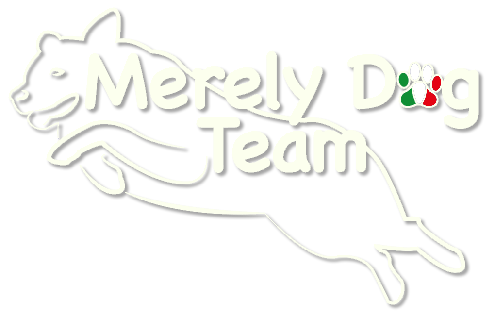 Merely Dog Team